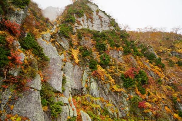 立山黒部アルペンルート|紅葉の大観峰