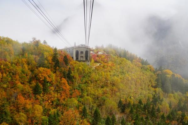 立山黒部アルペンルート|紅葉の大観峰と黒部平