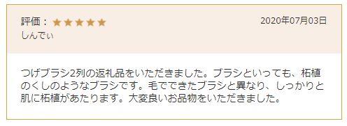 f:id:nemunemia:20210224163050j:plain