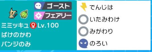 f:id:nemunemu-poke:20200302113121j:plain