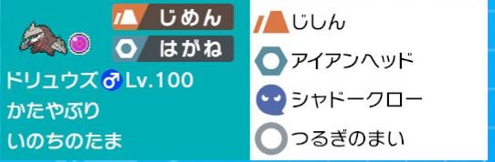 f:id:nemunemu-poke:20200601125042j:plain