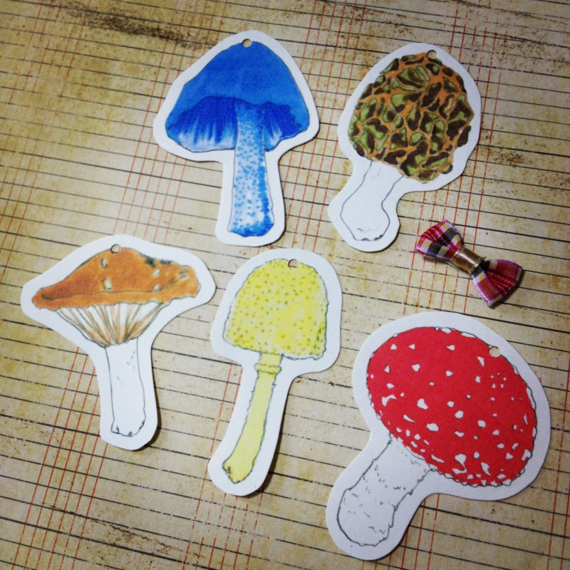 f:id:nemunoki-letter:20120613172801j:image