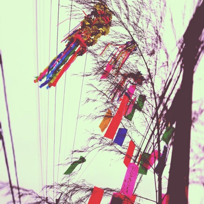 f:id:nemunoki-letter:20120705161907j:image
