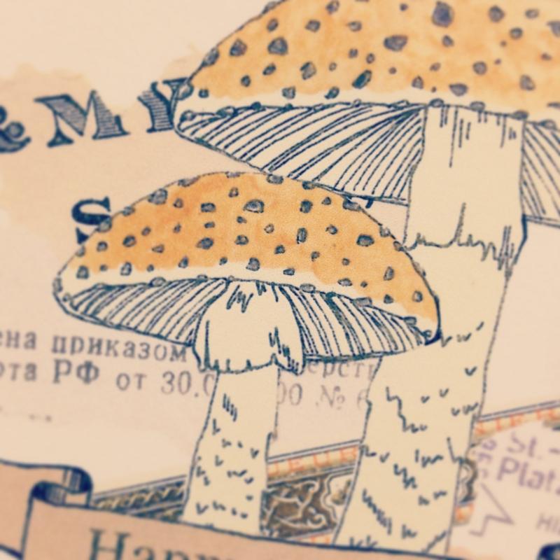f:id:nemunoki-letter:20121226092540j:image