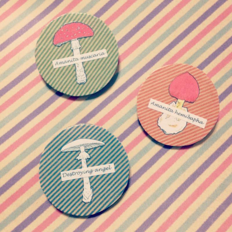 f:id:nemunoki-letter:20130118090304j:image