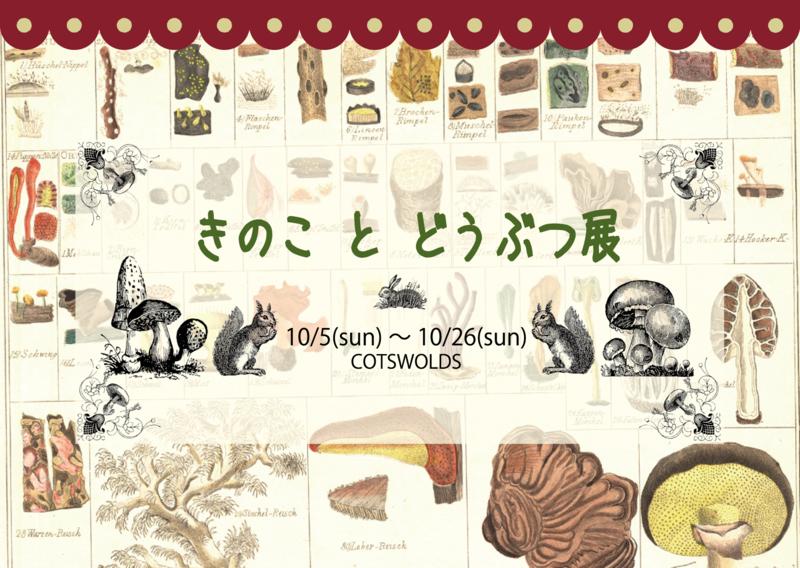 f:id:nemunoki-letter:20140910105655p:image