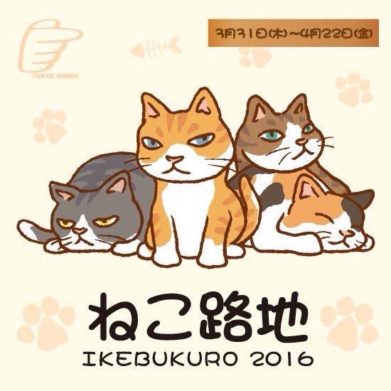 f:id:nemunoki-letter:20160324032132j:image