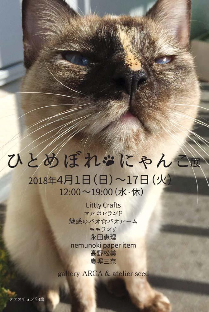 f:id:nemunoki-letter:20180209135410j:plain