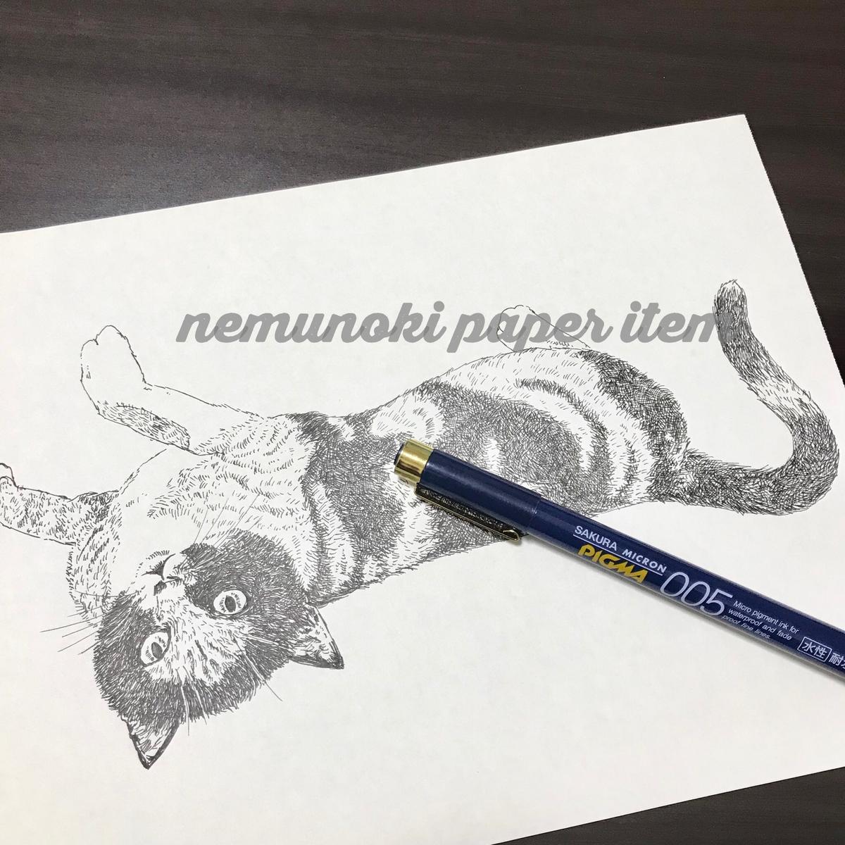 f:id:nemunoki-letter:20190914192450j:plain