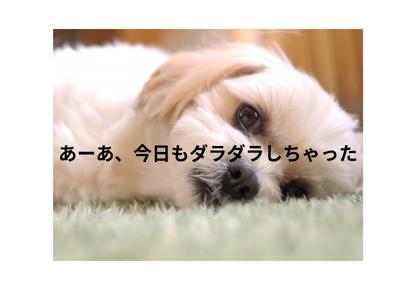 f:id:nemutai-me:20190524170041p:plain