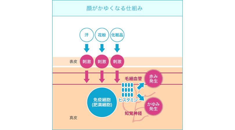f:id:nemutai-me:20191023223450p:plain