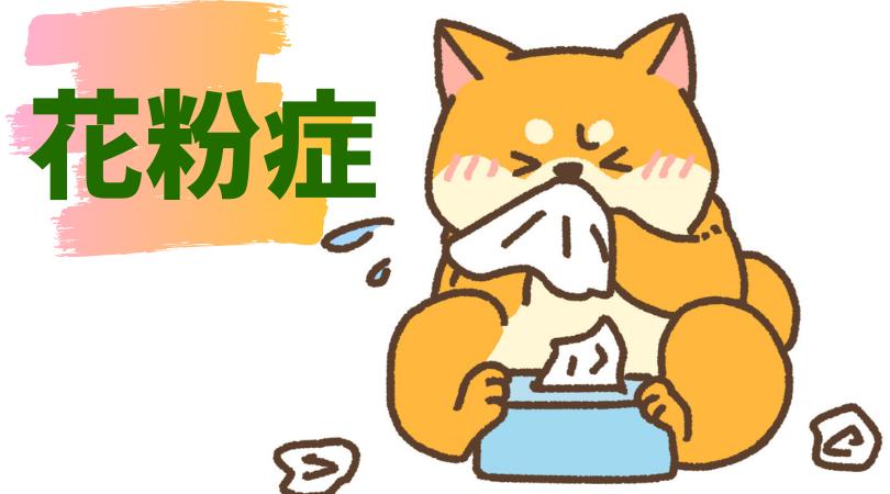 f:id:nemutai-me:20191024091850p:plain
