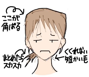 f:id:nemutai-me:20191026110910p:plain