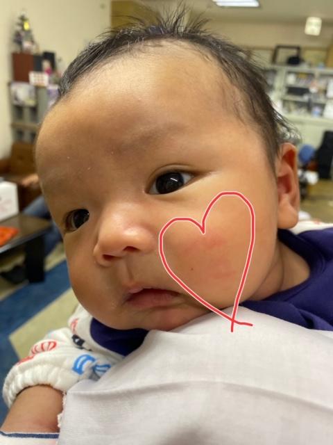 f:id:nenez-okinawa:20191217151603j:plain
