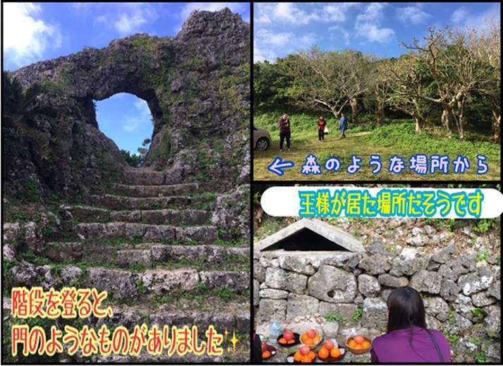 f:id:nenez-okinawa:20200203150304j:plain