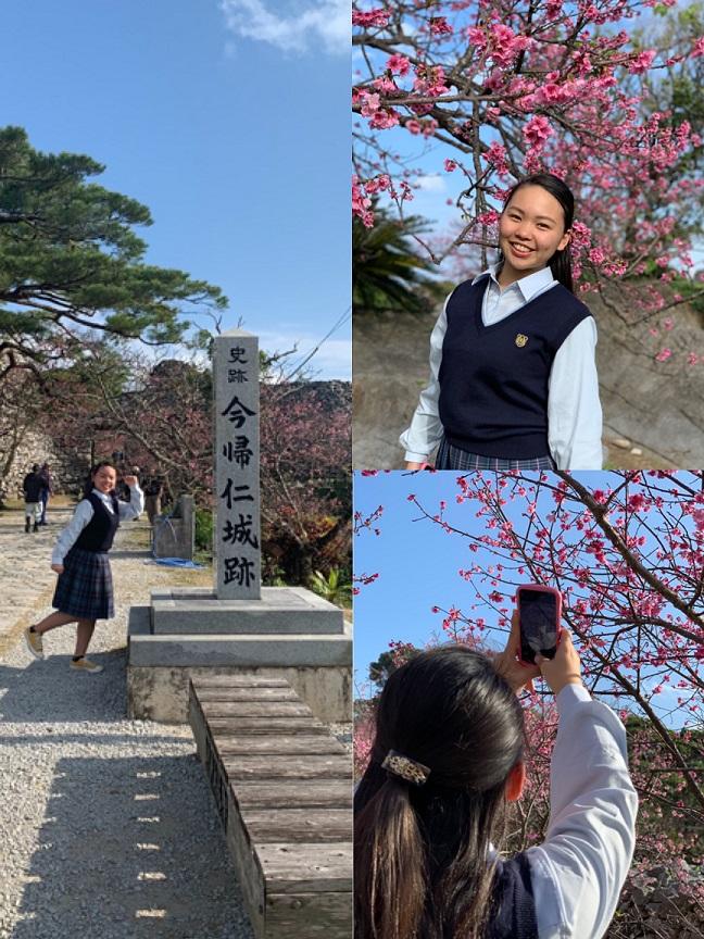 f:id:nenez-okinawa:20200308041155j:plain