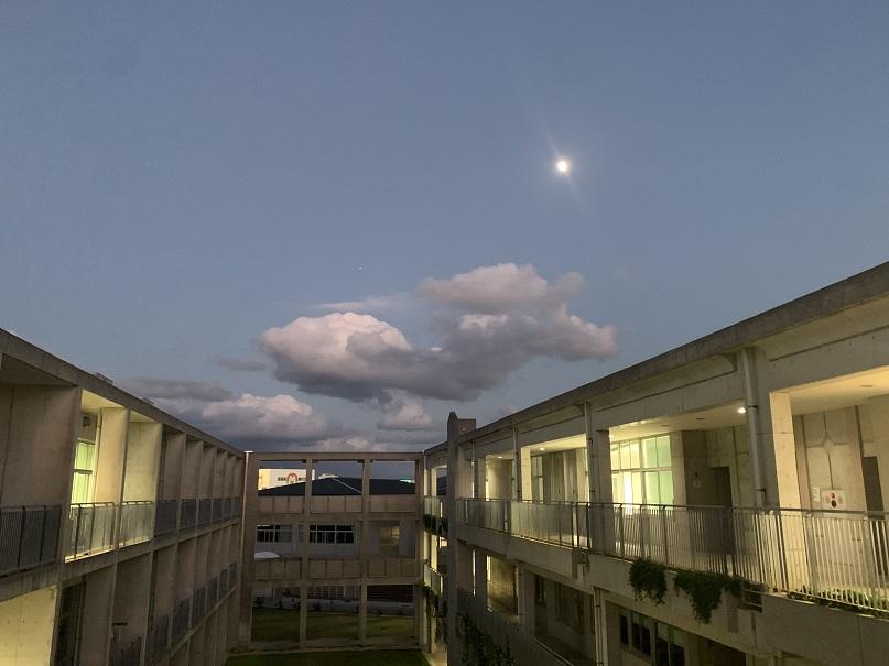 f:id:nenez-okinawa:20201212161748j:plain