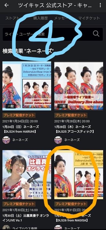 f:id:nenez-okinawa:20210129161929j:plain