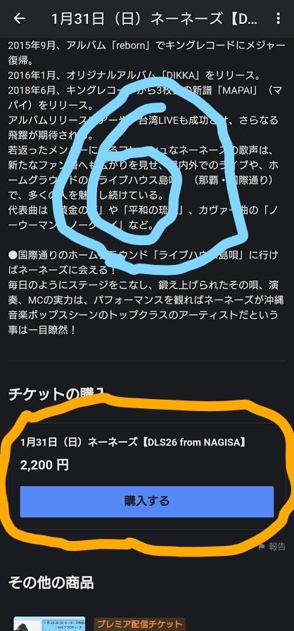f:id:nenez-okinawa:20210129162040j:plain