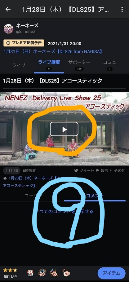 f:id:nenez-okinawa:20210129162902j:plain