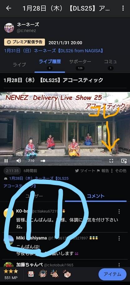 f:id:nenez-okinawa:20210129162918j:plain