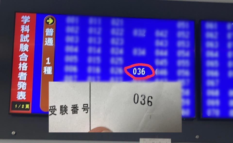 f:id:nenez-okinawa:20210305172530j:plain