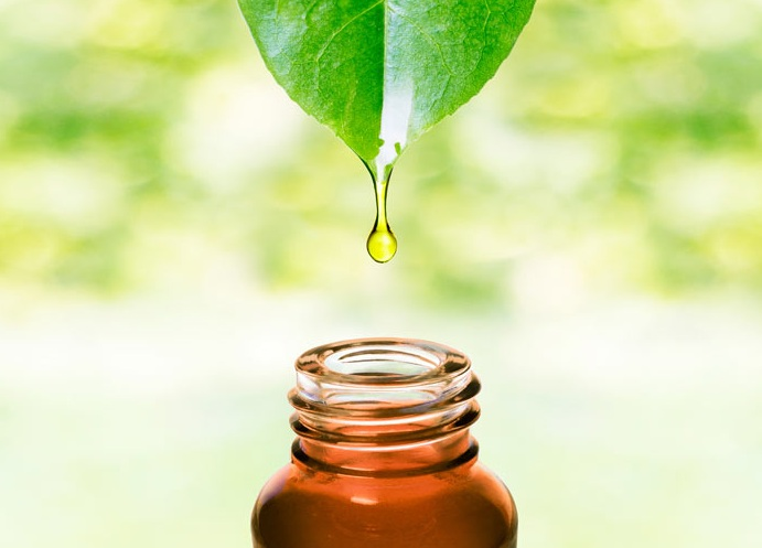 Capture the Essence of Nature with These 10 Hydrosols - neoessentialoils's blog