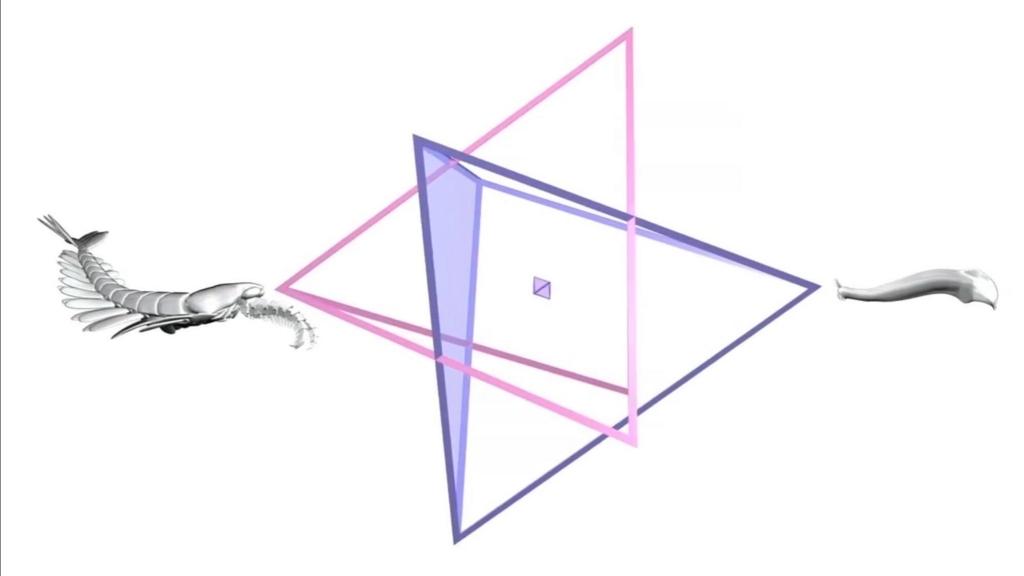 f:id:neotenyx:20171213071501j:plain