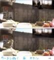 [オカン][ミィ]逆光カーテン&縁側オカン 13-04-08