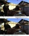 [キジ]キジくんのいい表情 14-12-23