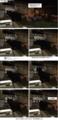 [新人さん][黒い子]耳白の黒さん 15-04-09