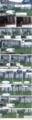 [グレさん][ちびーず][ミィ]ペンさん一家 その1 16-06-09