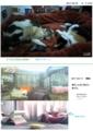 [キィ]キィちゃんおんぶおばけ&鳥さん 17-03-07,11