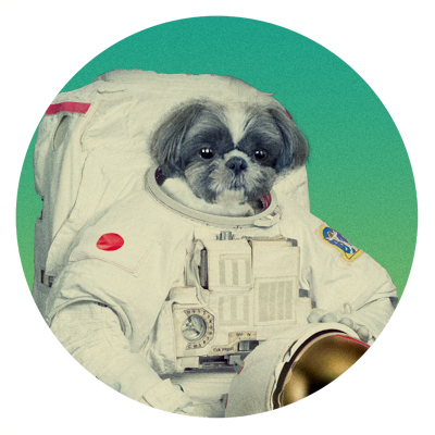 f:id:net_space:20161111234133j:plain