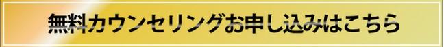 f:id:netshoppingchance:20160901095246j:plain