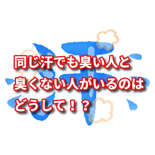 f:id:netstage:20191115134642p:plain