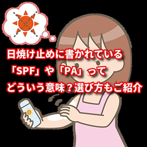 f:id:netstage:20191116104453p:plain