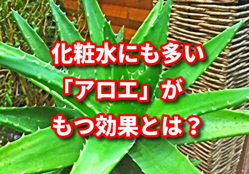 f:id:netstage:20191226184826j:plain