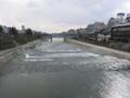 京都新聞写真コンテスト 加茂川