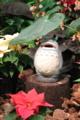 京都新聞写真コンテスト 『となりのトトロ』