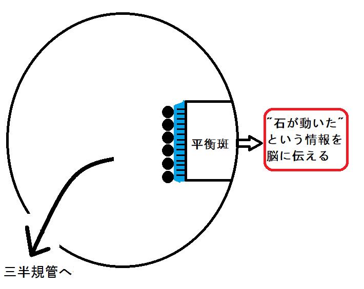 f:id:neurology-kanazawa:20210303230459p:plain