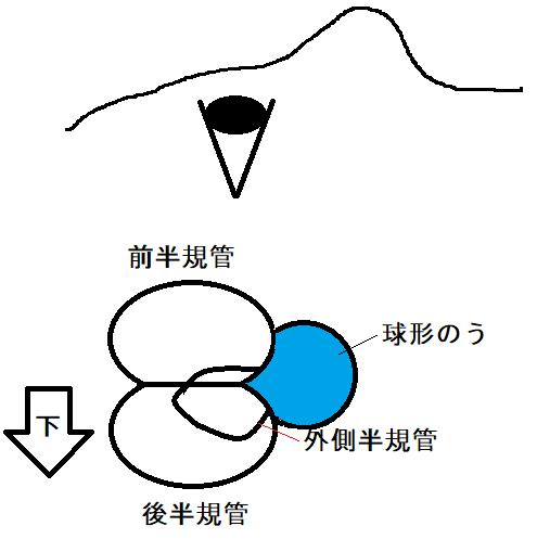 f:id:neurology-kanazawa:20210308145145p:plain