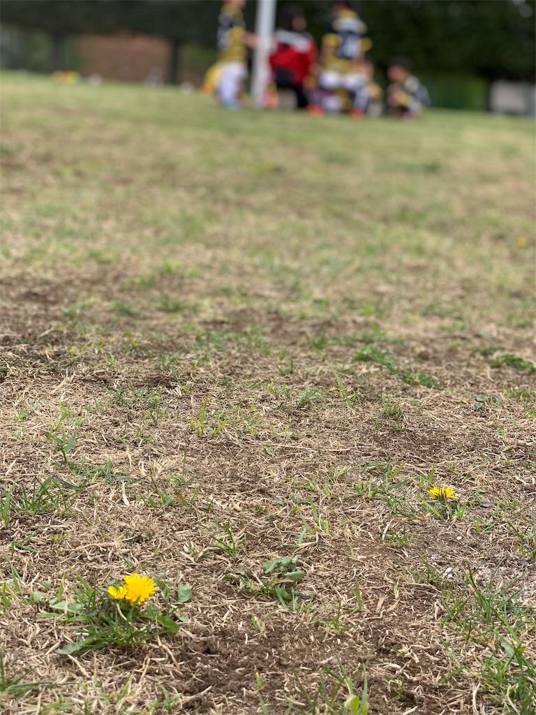 f:id:neutralfootball:20190415165426j:image