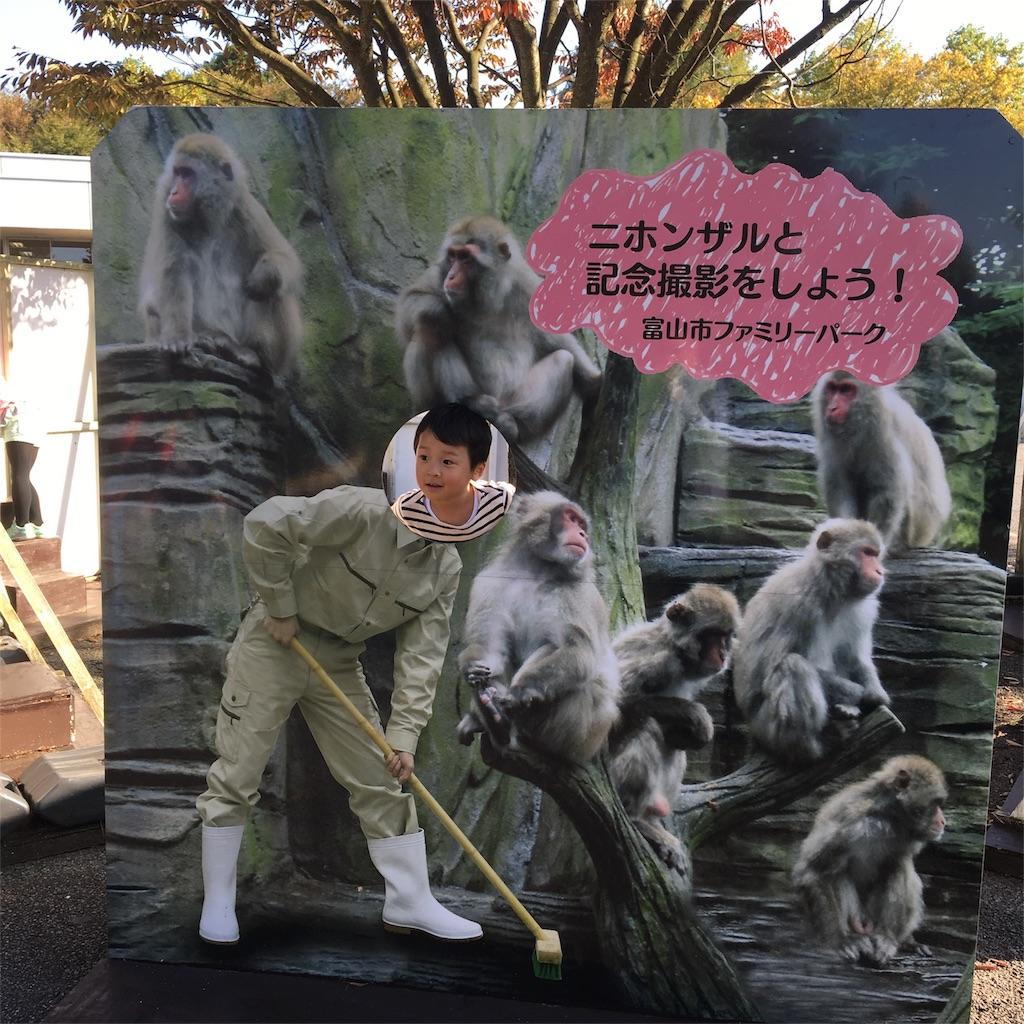 f:id:neutrallife-seitaikawamoto:20170320121154j:image