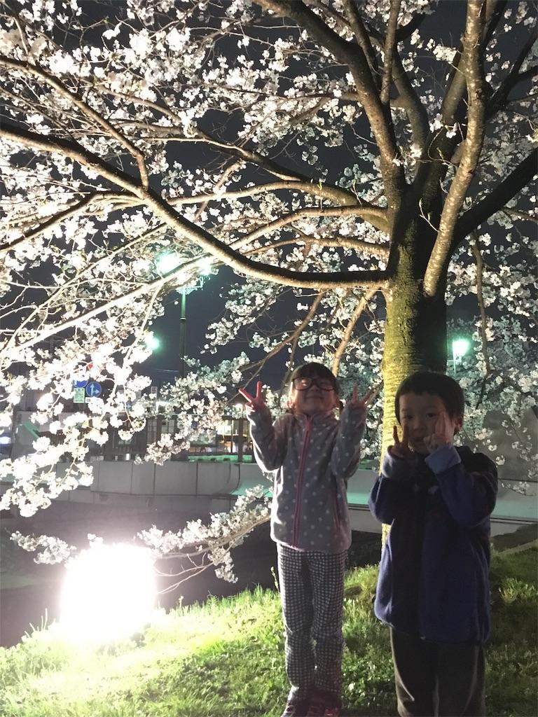 f:id:neutrallife-seitaikawamoto:20170408202910j:image