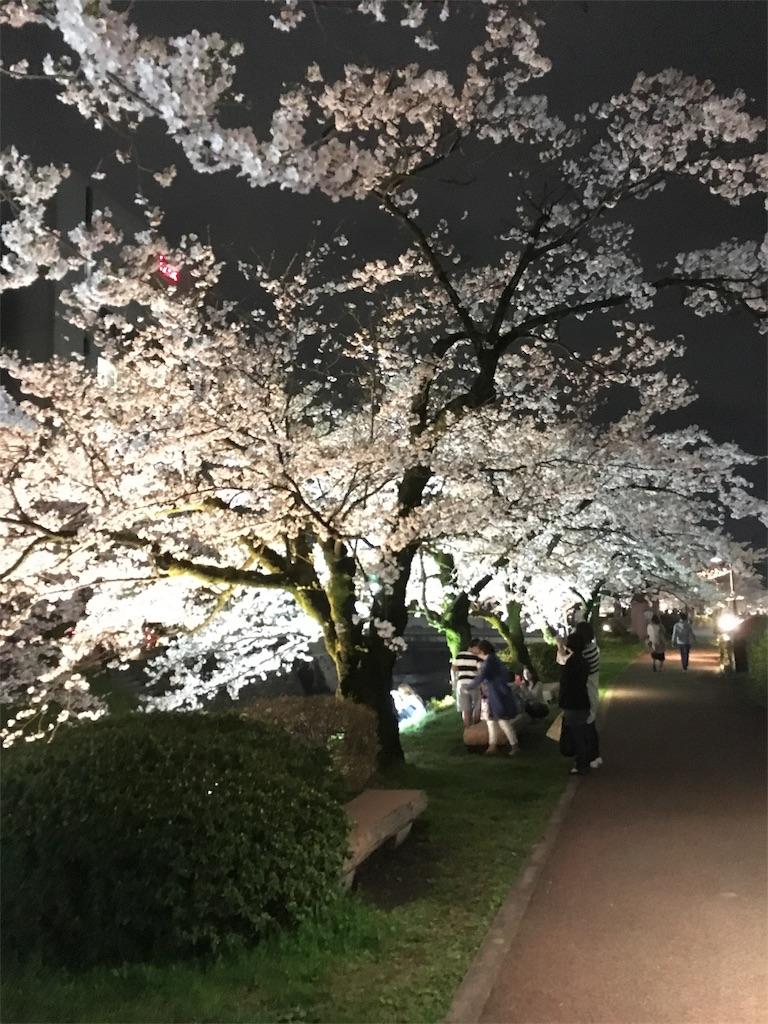 f:id:neutrallife-seitaikawamoto:20170408202934j:image