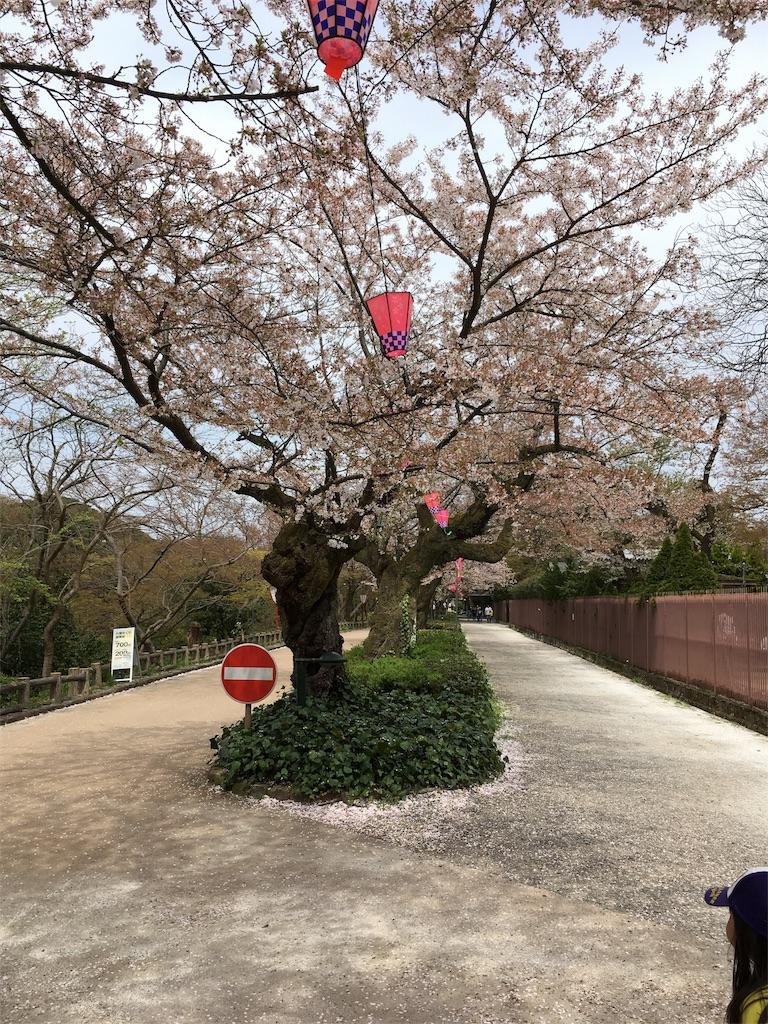 f:id:neutrallife-seitaikawamoto:20170419102105j:image