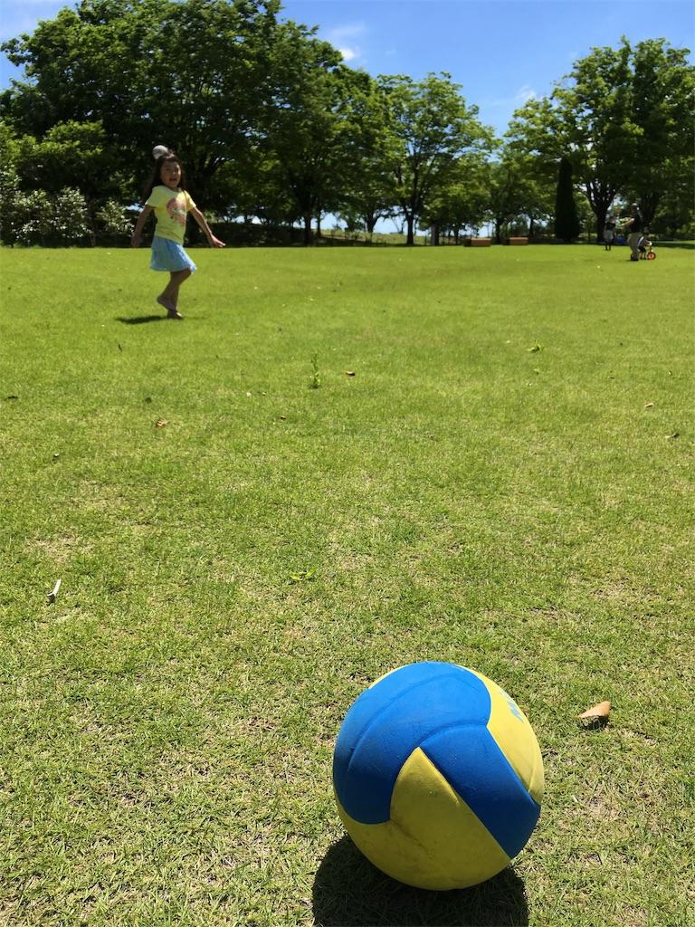 f:id:neutrallife-seitaikawamoto:20170612113700j:image