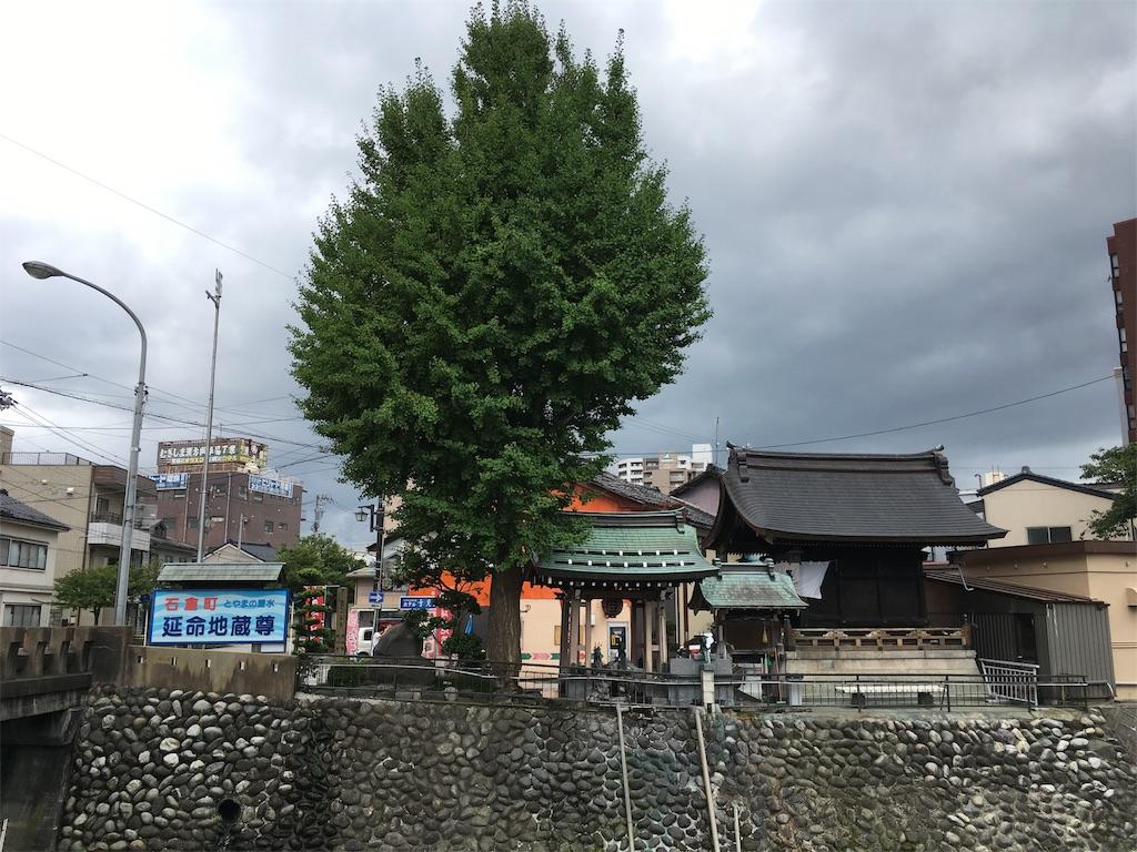 f:id:neutrallife-seitaikawamoto:20170814091129j:image