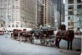 セントラル・パークの前の馬車